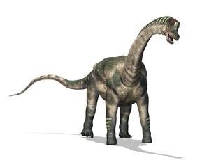 Antartosaurus Dinosaur