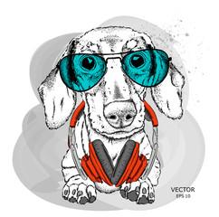 Hipster dog in cap. Vector illustration