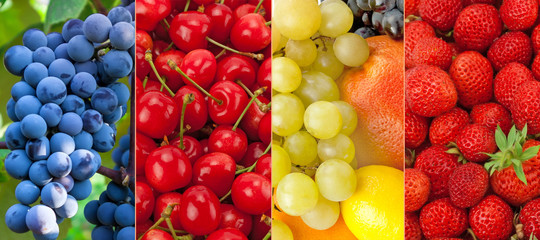 Panoramic collection fresh and healthy fruits .