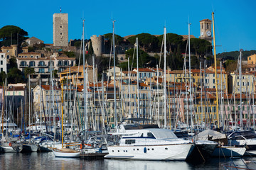 Yachts moored in port of Cannes