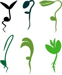 Set of silhouettes of different sprouts