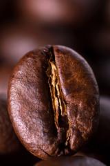 Closeup macro of one roasted brown or black coffee grain background