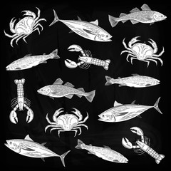 A set of drawings on the theme of seafood. Salmon, tuna, cod, lobster, crab. Vector illustration
