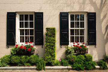 Adorned and Decorate Architectural window, door, planter box