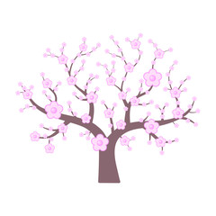 Pink japanese cherry. Spring flowering tree. Vector illustration