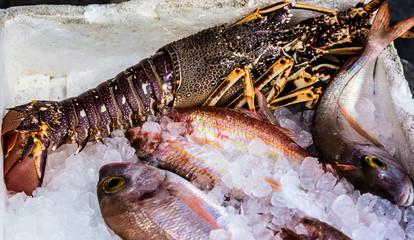 Seafood, close up