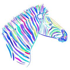 Rainbow blue Zebra portrait, Head sketch isolated on white background. Vector