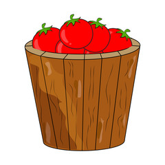cartoon tomatoes basket, bucket isolated on white background