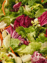 Fresh organic lettuce on wood