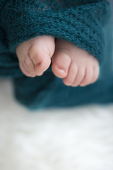 baby feet in blanket, copy space. selectiv focus