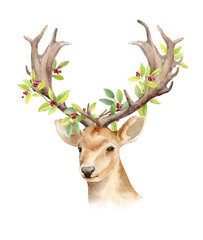 The head of a male deer with horns and woven branches of a tree. Isolated background. Boho template to design posters, wedding invitations, cards.