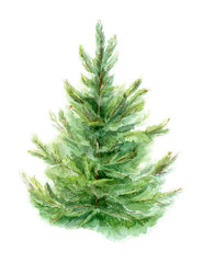 Element of watercolor fir-tree design for cards, posters, Christmas cards. Isolated background.
