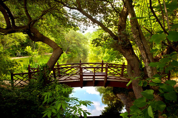 Foto op Plexiglas Bruggen A romantic colonial bridge in Williamsburg Virginia immersed in a green woodland with a beautiful reflecting water pond.