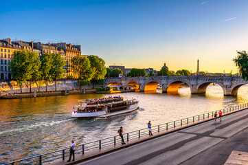 Wall Mural - Pont Neuf is the oldest bridge across the river Seine in Paris, France. It is one of the symbols of Paris.