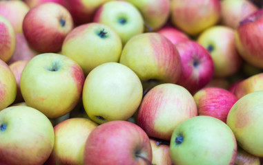 bunch of red and green apples, Apple background