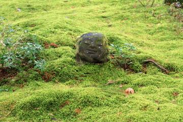 三千院の苔庭と仏像