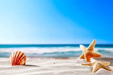 Summer beach and shells with blurred blue sea and sky