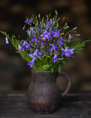 field flowers bells in a ceramic jug