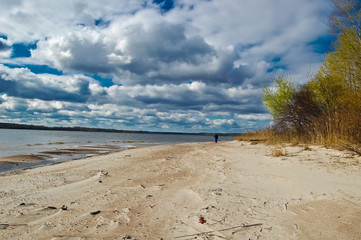 Spring wind on the sandy spit of the river island