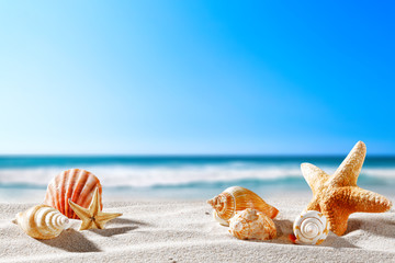 Summer background of free space for your decoration