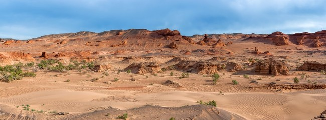 Монголия. Пустыня Гоби. Урочище Хермен-Цав. Панорама.