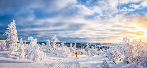 Cross-country skiing in Scandinavian winter wonderland at sunset Wall mural