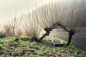 Boat under willow trees in foggy morning on the shore of Luznice River in Czech Republic, peaceful relaxation leisure free time or weather forecast concept