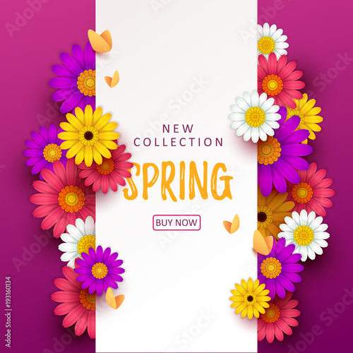 Colorful Spring Background With Beautiful Flowers Vector