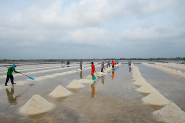 People are working together in the salt making process in Thaila