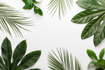 Green tropical leaves on white background. Flat lay, top view.
