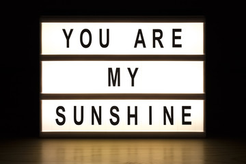 You are my sunshine light box sign board