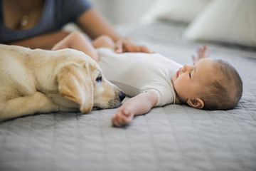Dog sitting next to baby boy on the bed