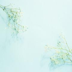 Blue background with twigs gypsophila in the corners. Workpiece for text. Copyspase