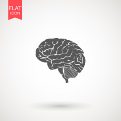 Brain icon flat isolated on white background. vector illustration. Human organ symbol