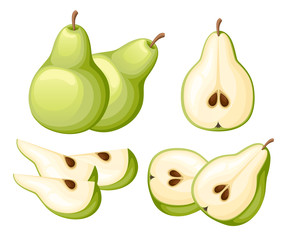 Pear and slices of pears. Vector illustration of pears. Vector illustration for decorative poster, emblem natural product, farmers market. Website page and mobile app design