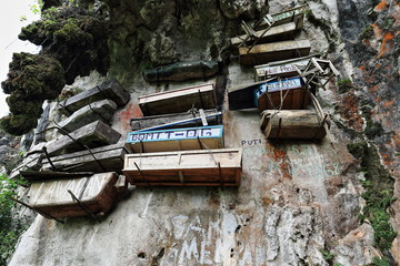Hanging coffins of the Igorot indigenous people. Sagada-Mountain province-Philippines. 0231