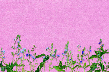 Spring background with small purple flowers. Decoration in delicate lilac, green, purple tones.