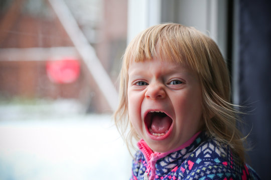 Close-up Portrait of Cute Blonde 18 Month Old Toddler Girl with Big Blue Eyes, Angry, Crying, Screaming Face Expression, Stand by the Window, Snowy Background