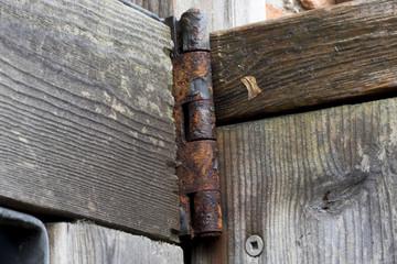 Rusty Steel hinge on a wooden door.