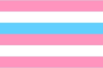 Bigender pride flag, flat icon. Symbol of bigender sexual orientation. Vector illustration of a colorful element