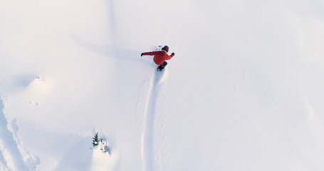 Poster Winter sports Snowboarding Overhead Top Down View of Snowboarder Riding Through Fresh Powder Snow Down Ski Resort or Backcountry Slope - WInter Extreme Sports Background