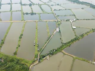 Aerial view Fish hatchery pond