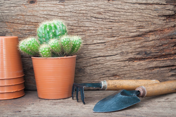 Gardener's desk with Cactus plant, Hobby and lifestyle concept