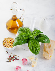 Fresh basil, parmesan cheese, olive oil. Ingredients for pasta, pesto sauce. White background.