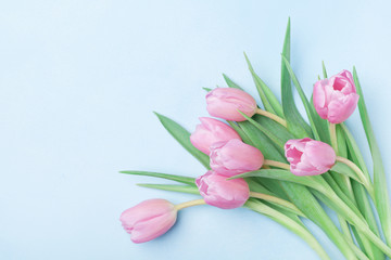 Bouquet of pink tulips for March 8, International Womans or Mothers day. Beautiful spring card. Top view.
