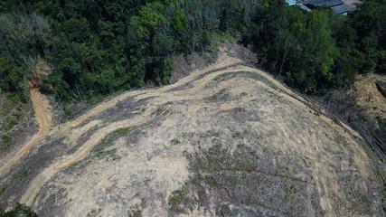 Deforestation. Logging of rainforest. Forest destroyed for oil palm industry