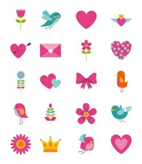 collection cute beauty flower bird heart envelope crown icon vector ilustration