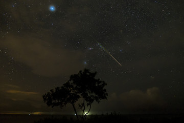 A fireball streak besides the Orion Constellation with a foreground of lone tree by the Pantai Manis beach, Papar, Sabah, Malaysia.