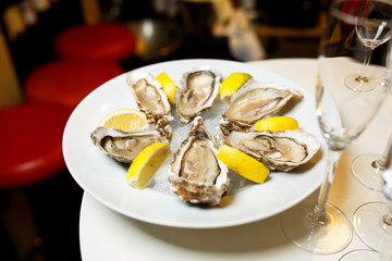 Oysters with ice and lemon in white plate