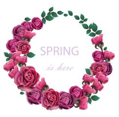 Spring Roses Flower wreath Vector realistic illustration. Fucsia color floral frame decors